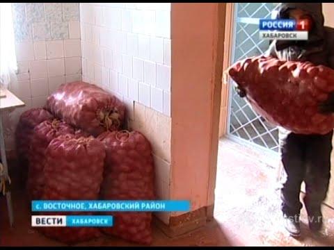 Вести-Хабаровск. Фермеры сдают излишки в магазины