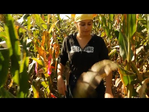 ACSF - African Mothers, Infants, and Malnutrition Caused by Corn Mold