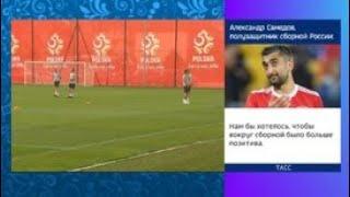 В Сочи зрители ждут начинала тренировки сборной Польши - Россия 24
