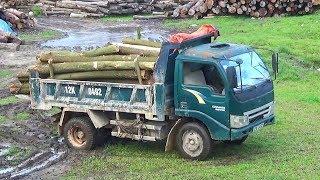 Bé xem xe ô tô tải chở gỗ   Nhạc thiếu nhi : Xin đừng bỏ con mẹ ơi   Tientube TV