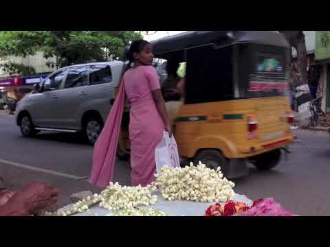 Walking the Streets of Chennai