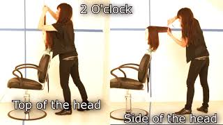 #6 Haircut with top of the head 2 O'clock  position