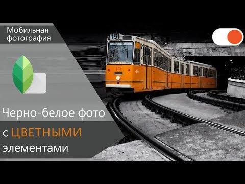 Как сделать черно-белое фото с ЦВЕТНЫМ объектом в Snapseed - Уроки мобильной фотографии