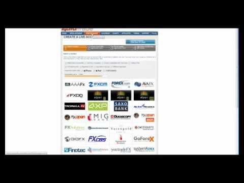 Forex webinar training