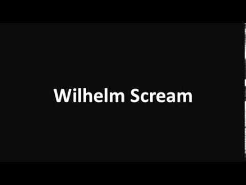 Wilhelm Scream Sound Effect video