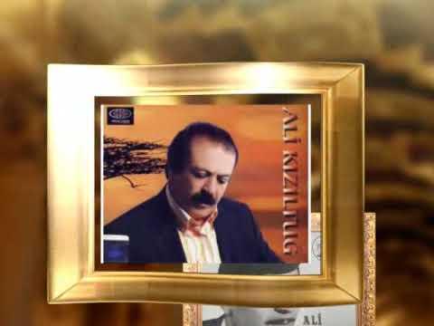 Ali Kiziltug - Bosa Gitti Hayallerim (Damar)