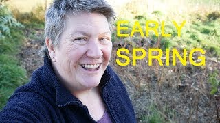 Early Spring Day | Signs of spring on our homestead