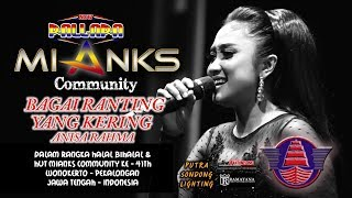 Download lagu BAGAI RANTING YANG KERING - ANISA RAHMA NEW PALLAPA - MIANKS COMMUNITY