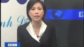 BBC Vietnamese Tien si Duong Nguyet Anh noi ve Vietnam P2