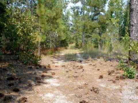 SC Land For Sale: Camden Equine Community Lot