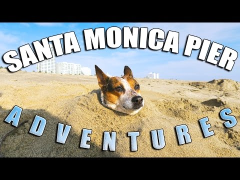 Adventures in Santa Monica with Kevin Corcoran!