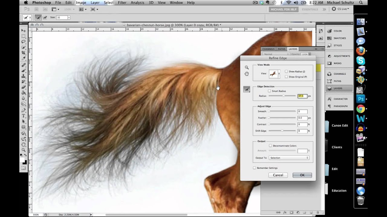 Select And Mask workspace - Adobe Help Center