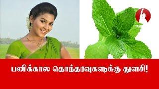பனிக்கால தொந்தரவுகளுக்கு துளசி! - Tamil Voice