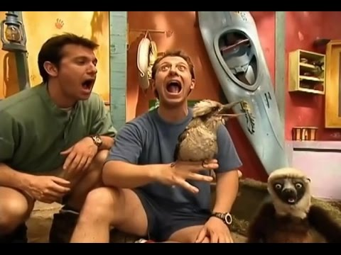 Zoboomafoo Cap  27:<br><iframe title=