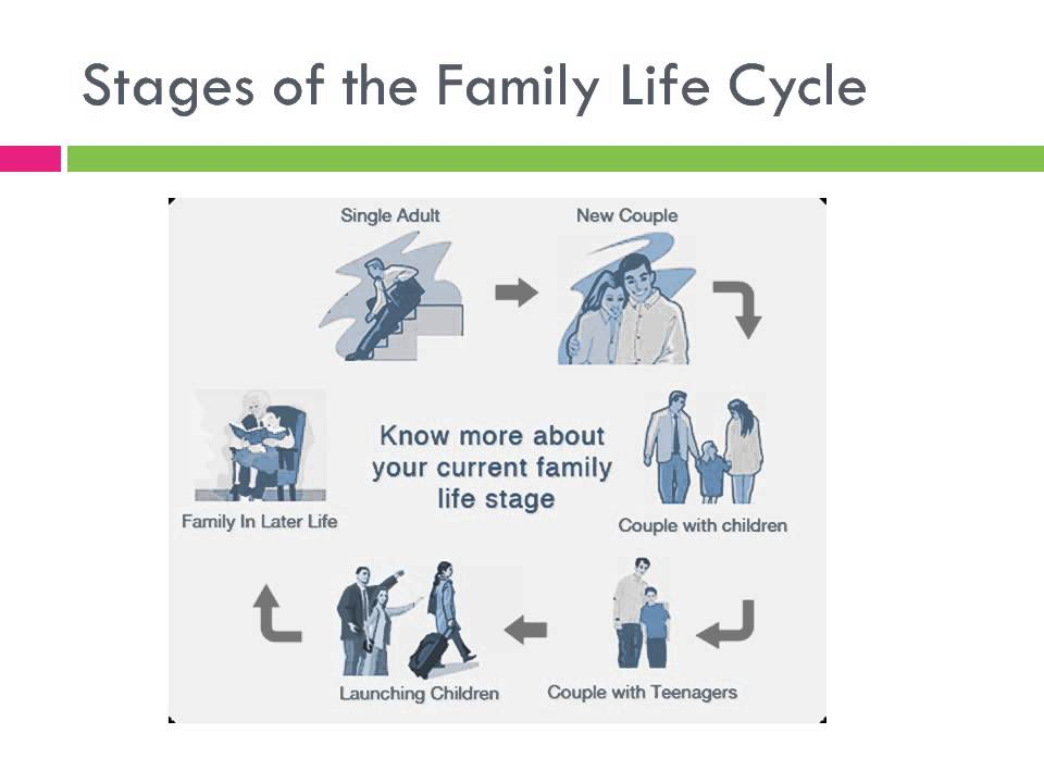 nine stages family life cycle