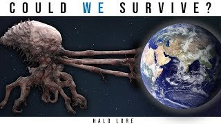 Could the Earth Survive a Flood Infection? (One Single Spore) | Halo Lore