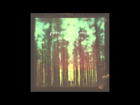 Fossil Collective - The Magpie