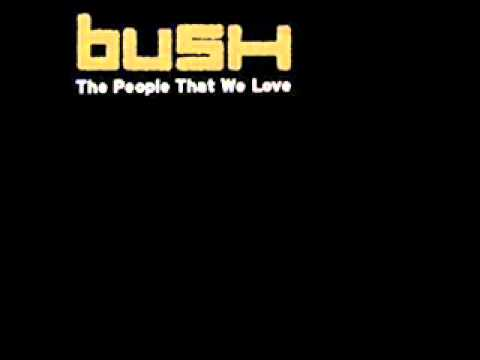 Bush - American Eyes