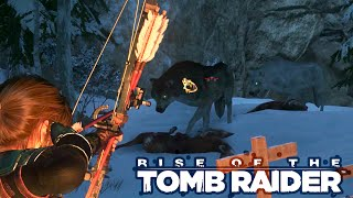 White Wolf + Special Bear RISE OF THE TOMB RAIDER