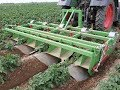 BASELIER GKB Inter-Row Potato Weeder