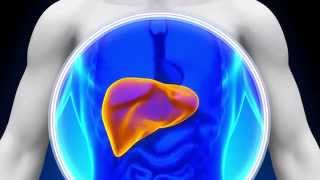7 Telltale Signs of a Liver Problem