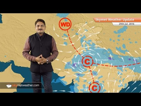 Weather Forecast for July 29: Rains to continue over Delhi, MP, Rajasthan, Haryana, UP