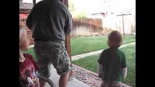Boy Plays Fetch