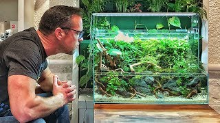 Awesome ADA Aquascapes in Switzerland!