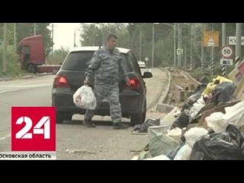 Операция #свиньЯ: как ловят тех, кто мусорит в лесах
