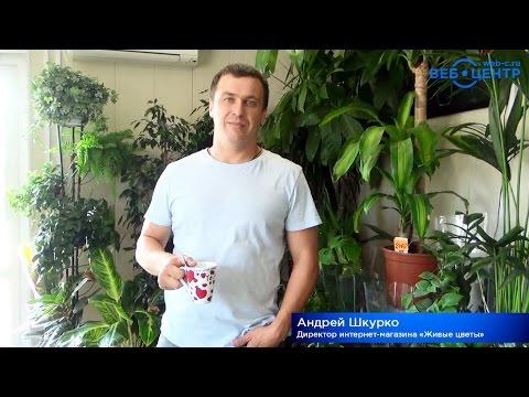 Отзывы клиентов: Андрей Шкурко об интернет-агентстве «Веб-Центр»