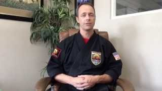 What's the difference between Karate and Mixed Martial Arts (MMA)