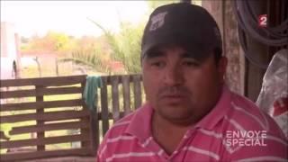 Envoyé spécial. Pesticides : la malédiction du soja 18/02/2016