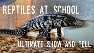 I Brought WHAT to School? (Tegu, Boa Constrictor, Skink, Gecko, Cockroaches)