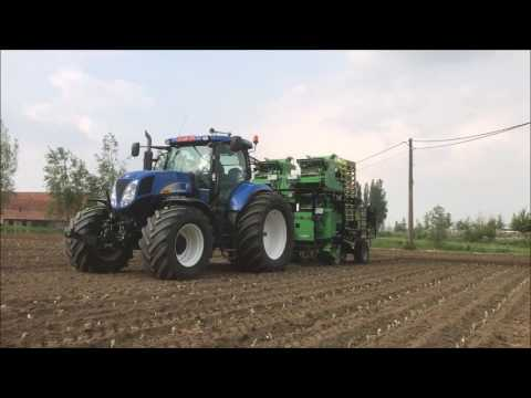 Agriplanter automatic transplanter - 4SP - celery - brussels sprout