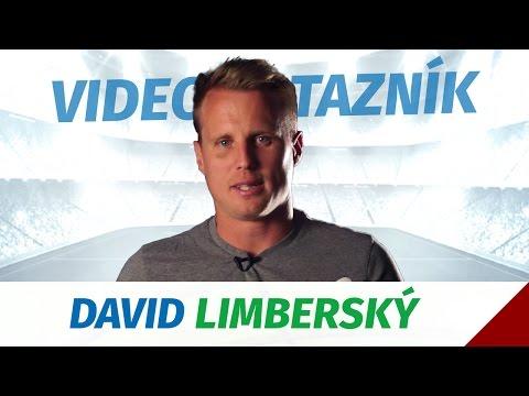 Videodotazník - David Limberský