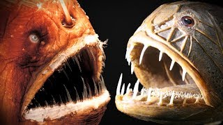 CREEPY Fish. Frilled SHARK, Fangtooth and Anglerfish