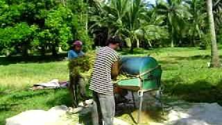 Mga-magsasaka-balik-trabaho-sa-bukid-matapos-ang-long-vacation