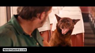RED DOG (2011) Official Trailer   HD Version