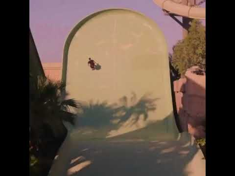 Waterpark fun in Dubai with @alexsorgente via @planbofficial | Shralpin Skateboarding
