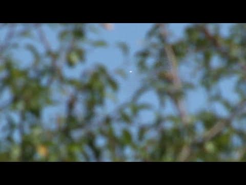 OVNIs Montevideo Uruguay 5 de febrero 2013 14 hs HD ver en 720p