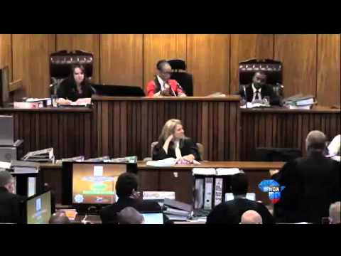 Oscar Pistorius Trial: Nel accuses Pistorius of changing defence