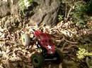 RC Rock Crawling NSW March Comp
