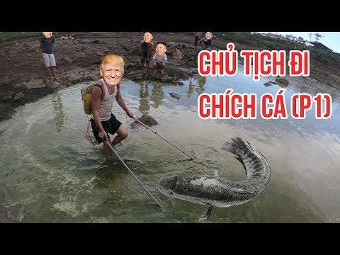 DTN - Chủ tịch đi bắt cá bằng điện và cái kết (Tập 1) | Electricity fishing