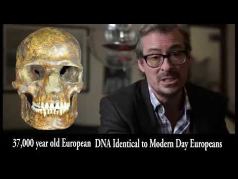 Ancient European DNA Results