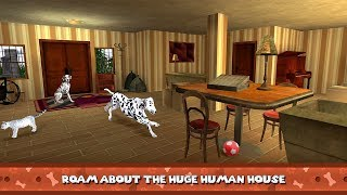 My Dalmatian Dog Sim - Home Pet Life Gameplay Video Android/iOS