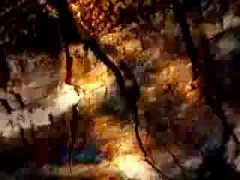 Dan Arborise - Take Heart In Your Hope