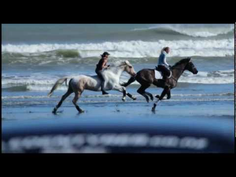 "AMAZING BEACH DAY- GALLOPING BAREBACK & BRIDLELESS """"Free Riding"""""
