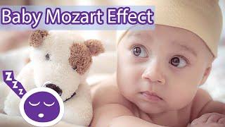 6 Hour Brain Development Music for Babies - Mozart Effect