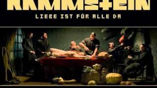 Watch Rammstein Donaukinder video