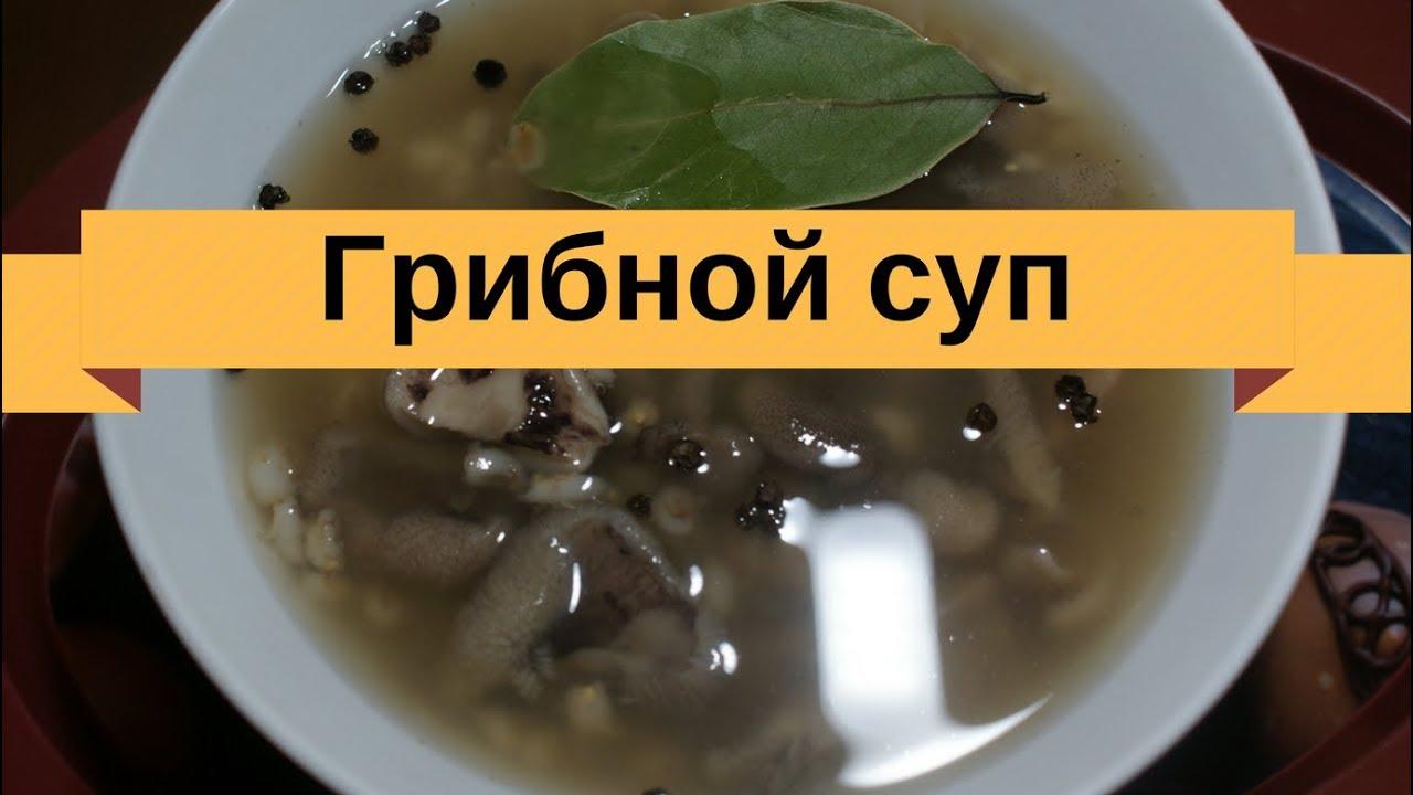Суп с белыми грибами в мультиварке рецепты с фото
